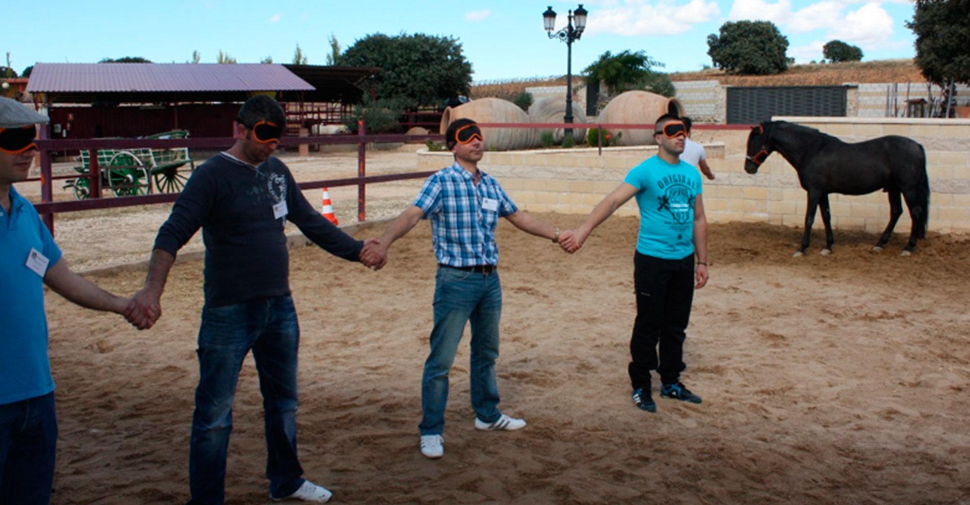Coaching-con-caballos---El-poder-de-la-equinoemocionalidad-05